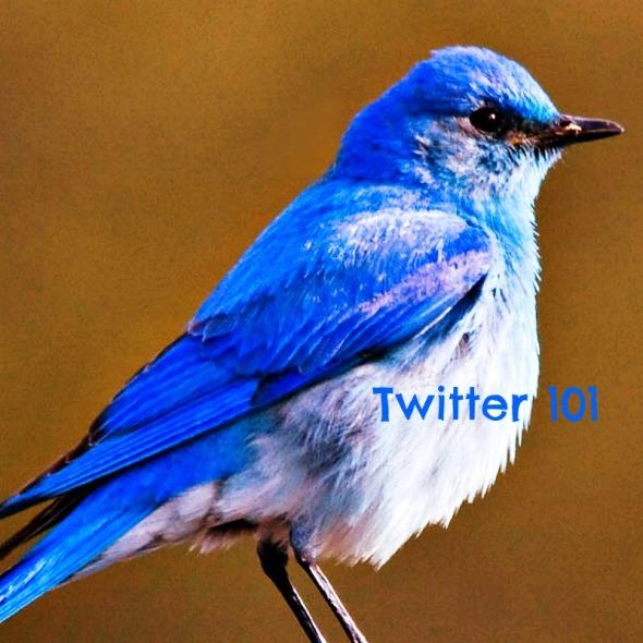 bluebird 2Twitter Try