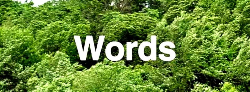 WordsWide